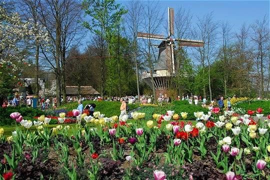 Sur les traces d'Anne Frank et de Van gogh, Amsterdam du 12 au 16 avril 2016