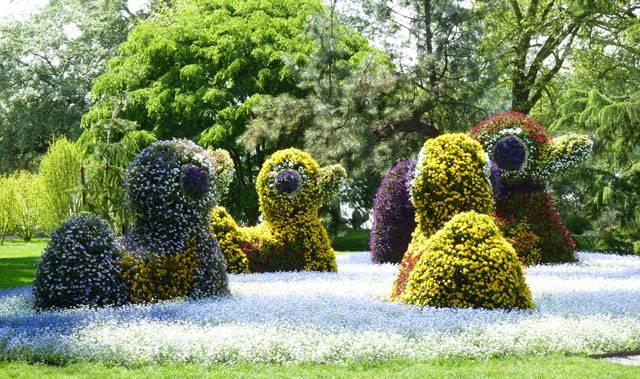 Sculpture de fleurs : Canards
