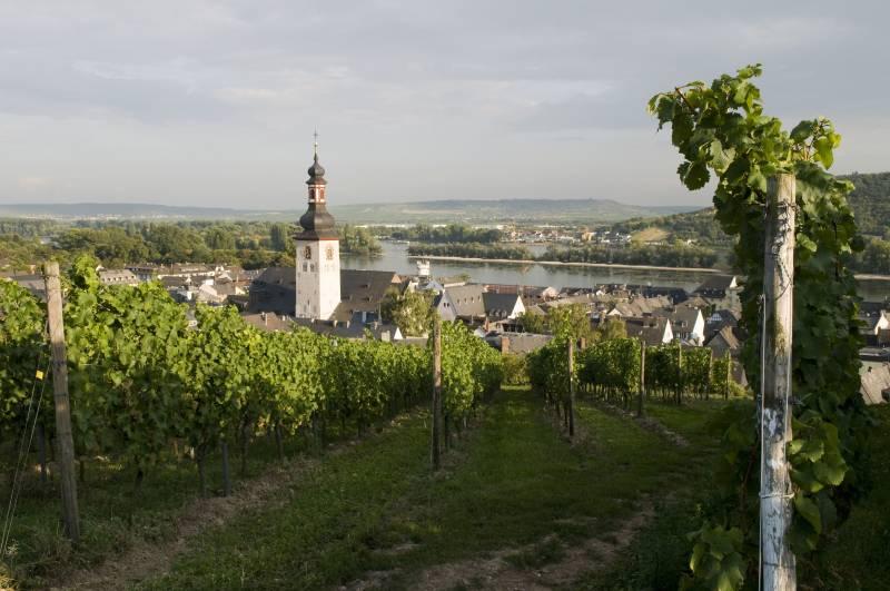 croisière sur le Rhin avec visite de Rüdesheim Octobre 2016